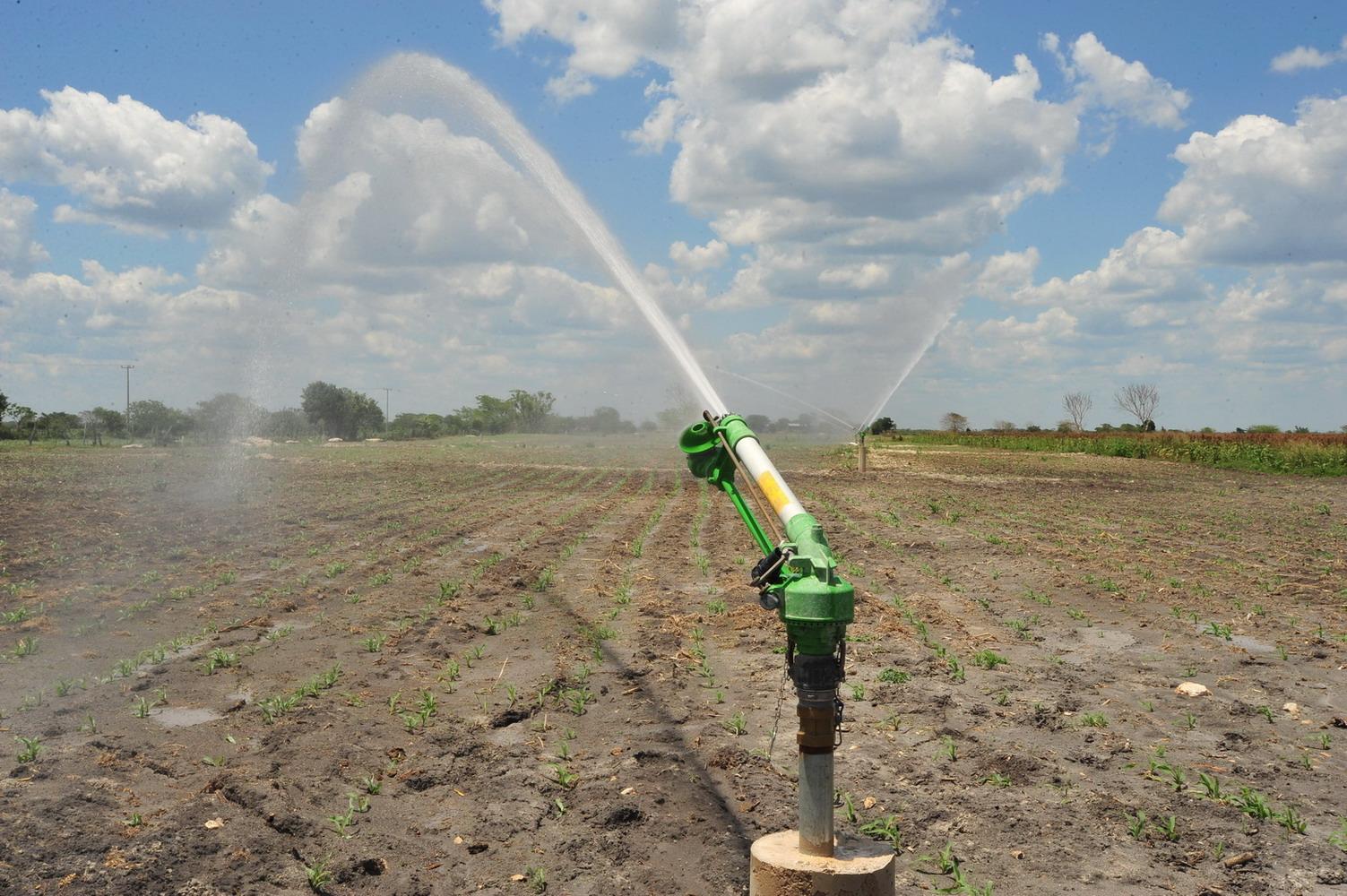 Inauguran distrito de riego en cesar abc del finkero for Aspersores para riego de jardin