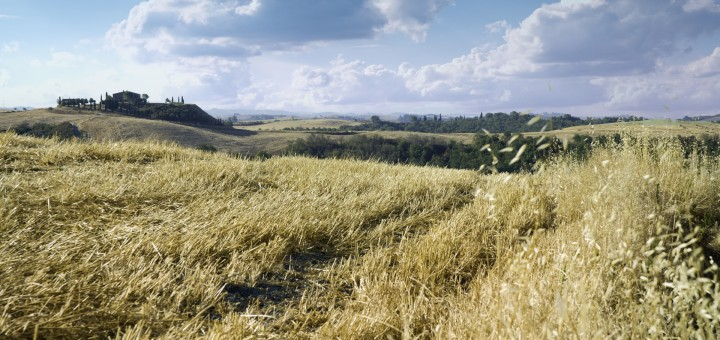 Tuscany Farm and Fields